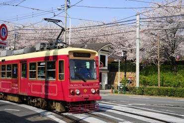 碩果僅存!坐上東京懷舊荒川線走跳5大景點