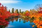 京都の紅葉絶景「永観堂」の見どころ。拝観時間やライトアップもご紹介