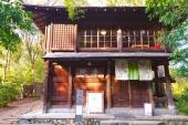 探訪京都吉田山半日遊!  隱身山頂森林咖啡屋「茂庵」與周邊2大走春絕景