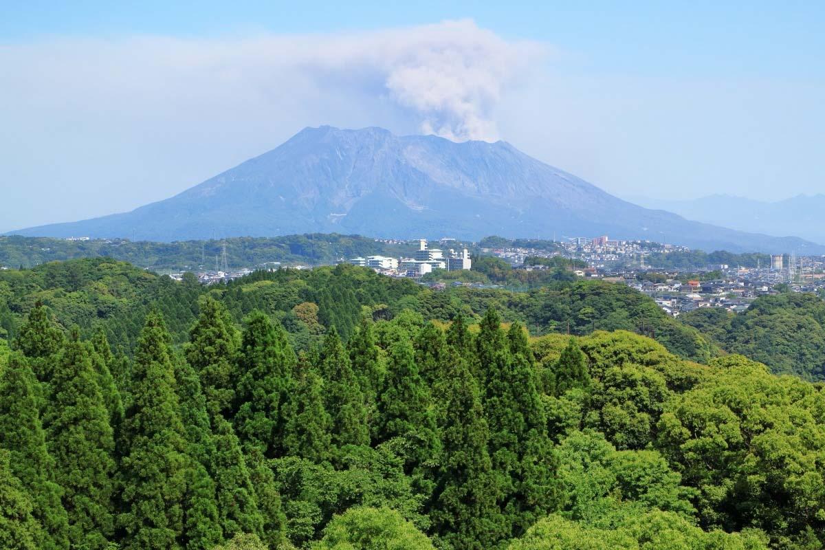 Đảo Sakura
