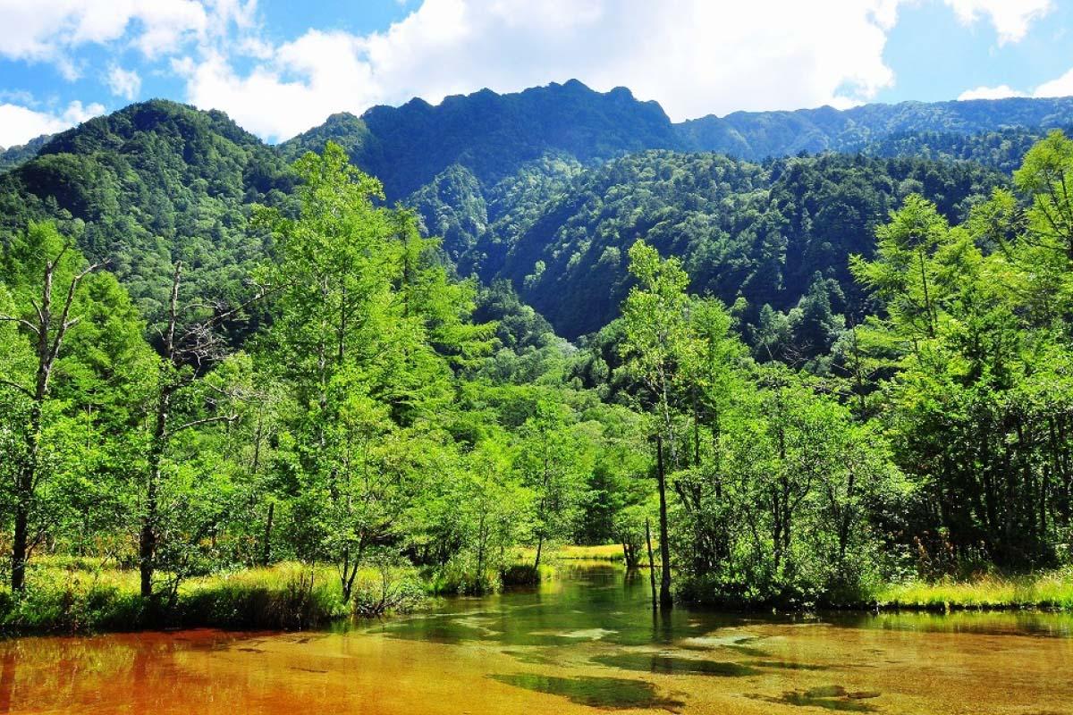 Tashiro Pond