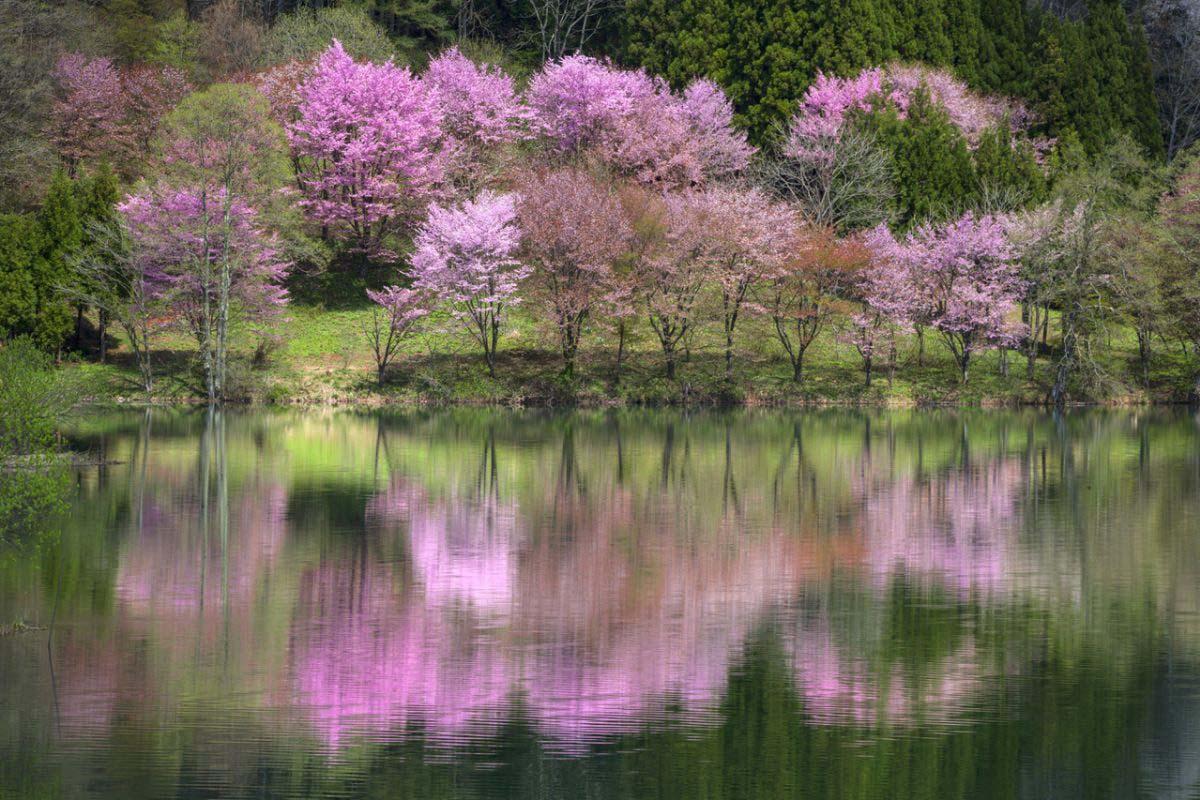 中綱湖の絶景|ZEKKEI Japan