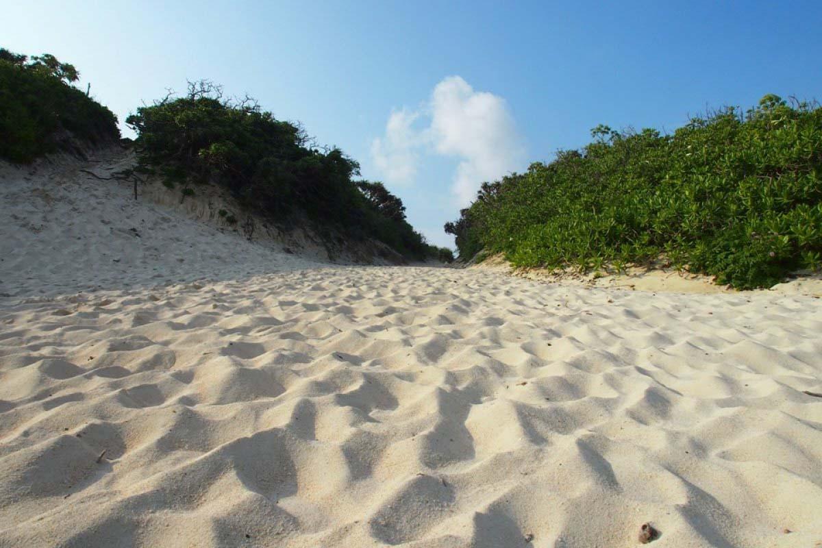 Bãi biển Sunayama