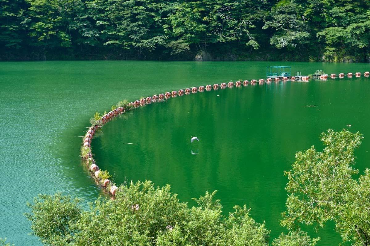 Lake Midori