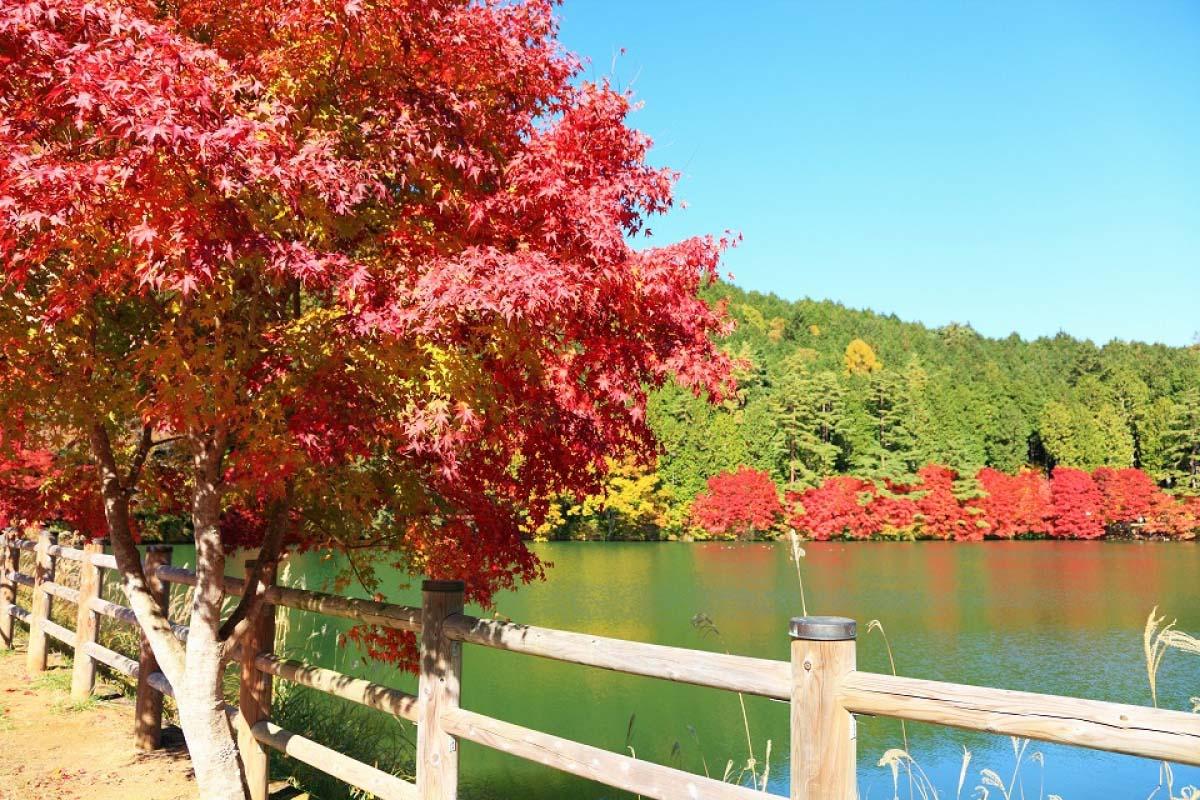 Hồ Minami ina gako