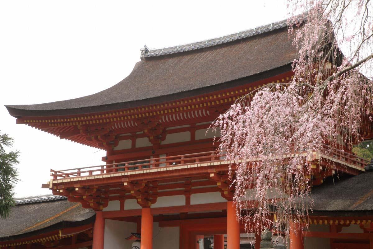 Đền thờ Kasuga