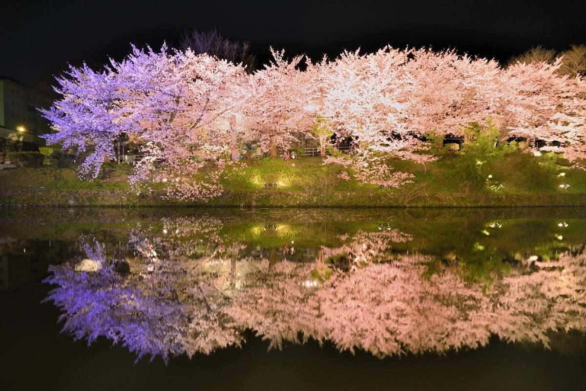 Công viên Maizuru