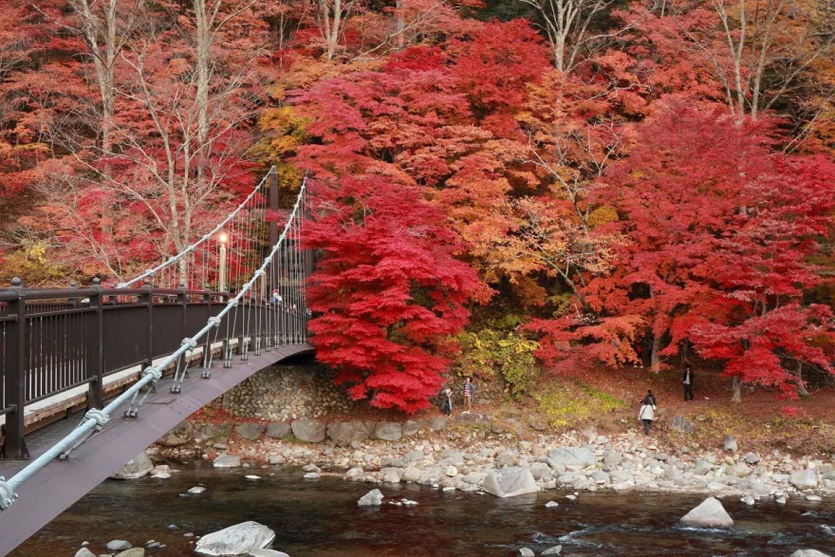 紅色吊橋 那須鹽原