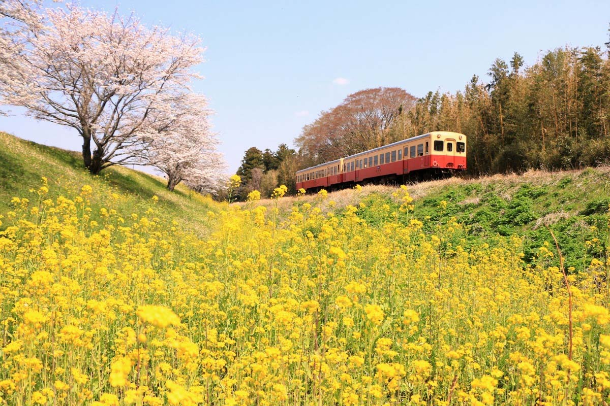 Đường sắt Kominato