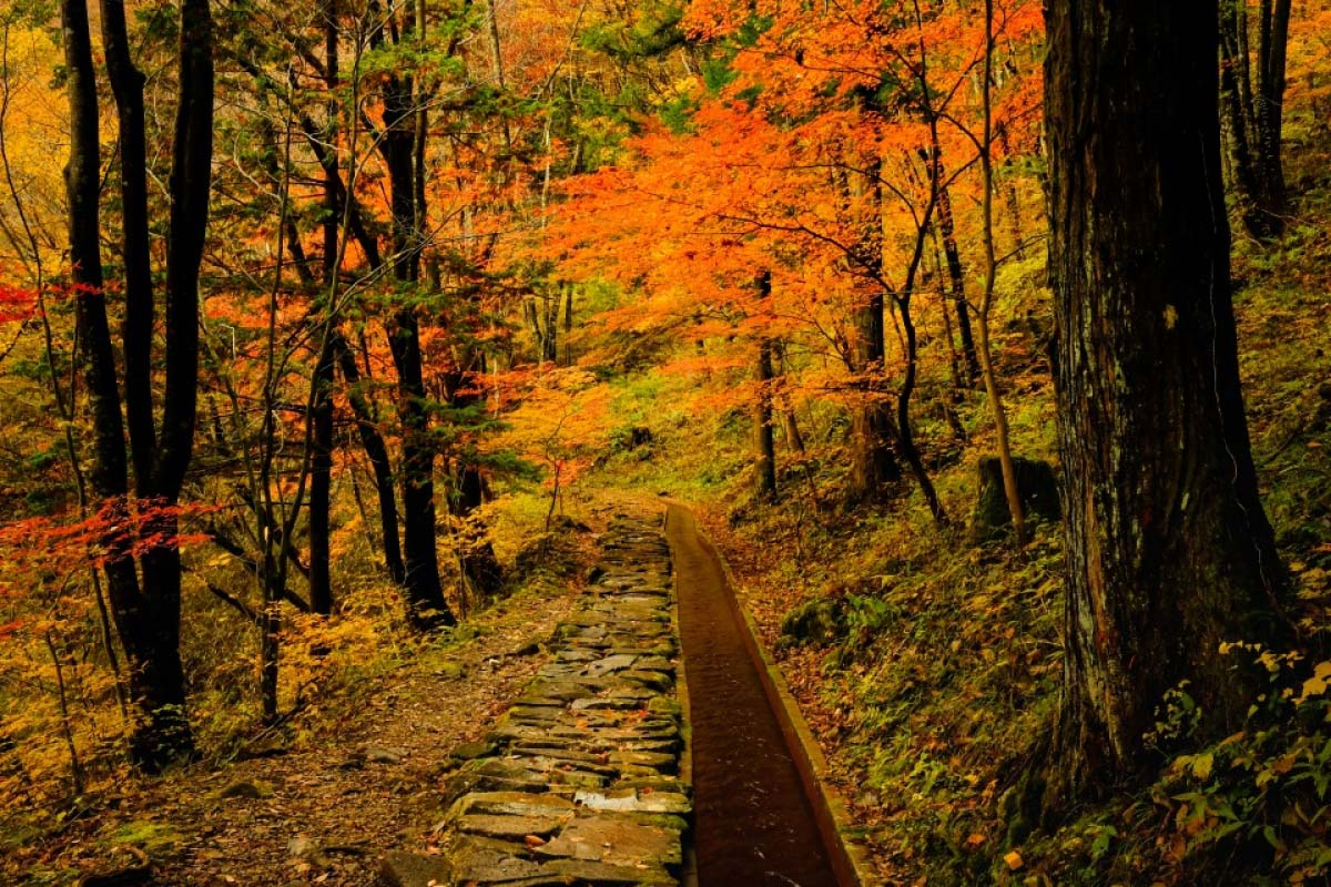 Tsukechi Gorge