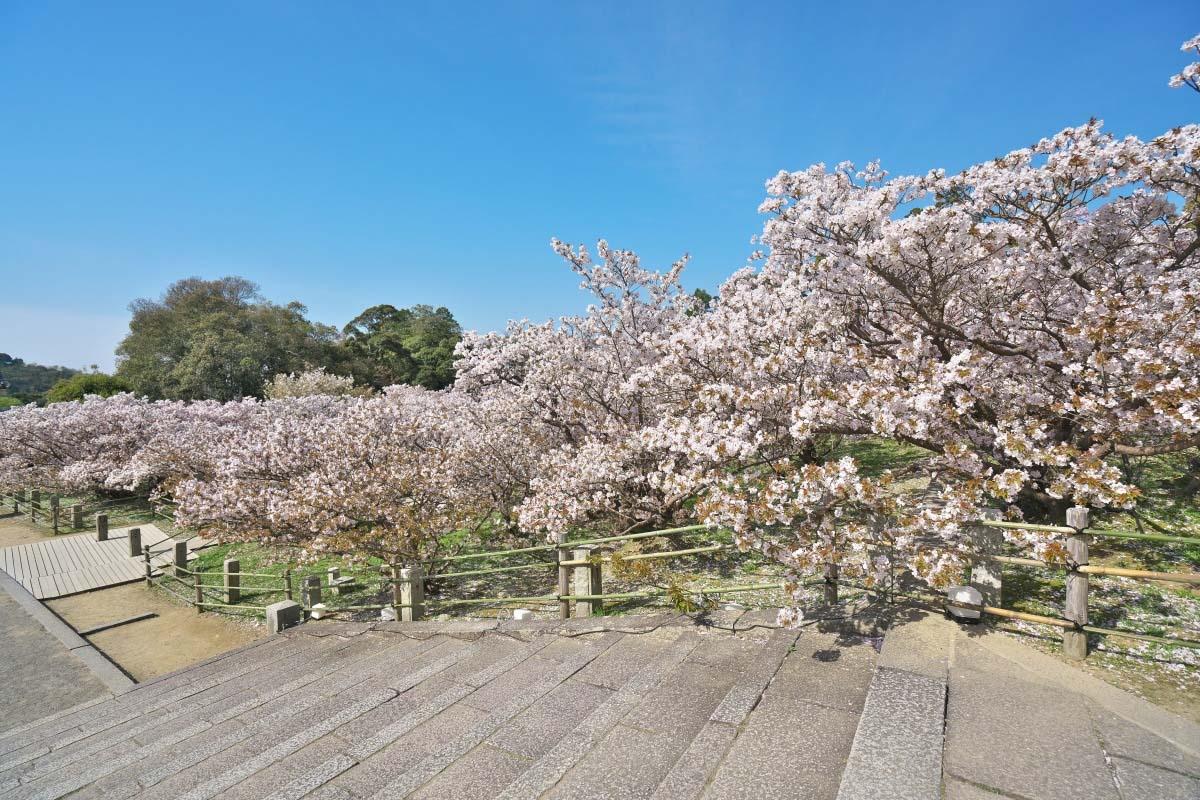 Cung điện Hoàng gia Kyoto
