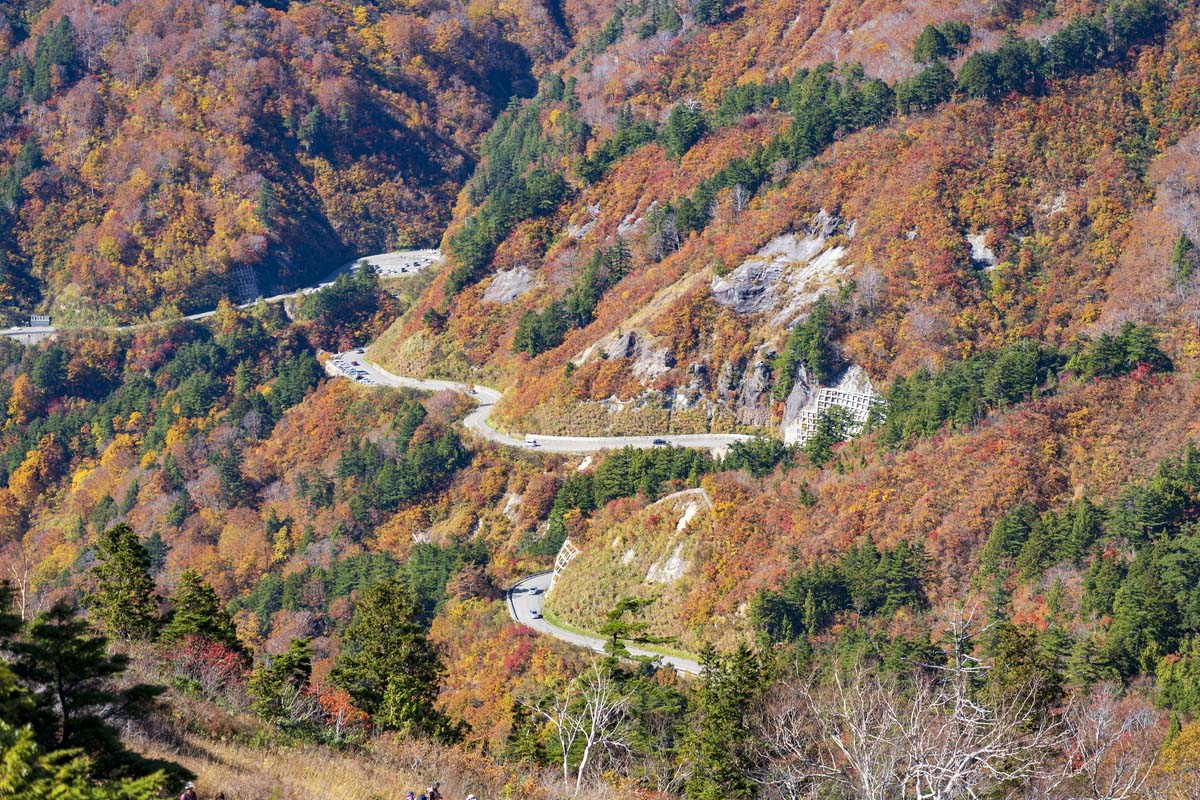 Hakusan Shirakawa-Go White Road (formerly Hakusan Super Forest Road)