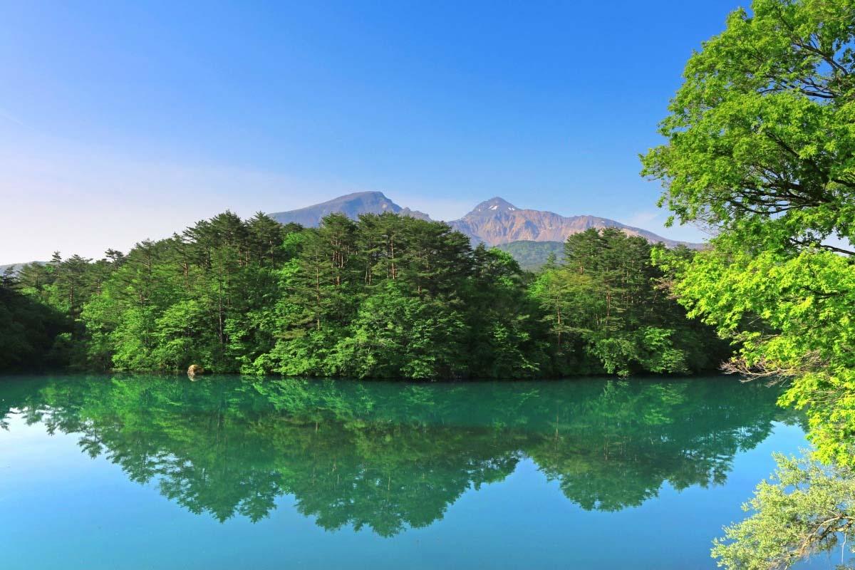 Swamp of five colors | ZEKKEI Japan