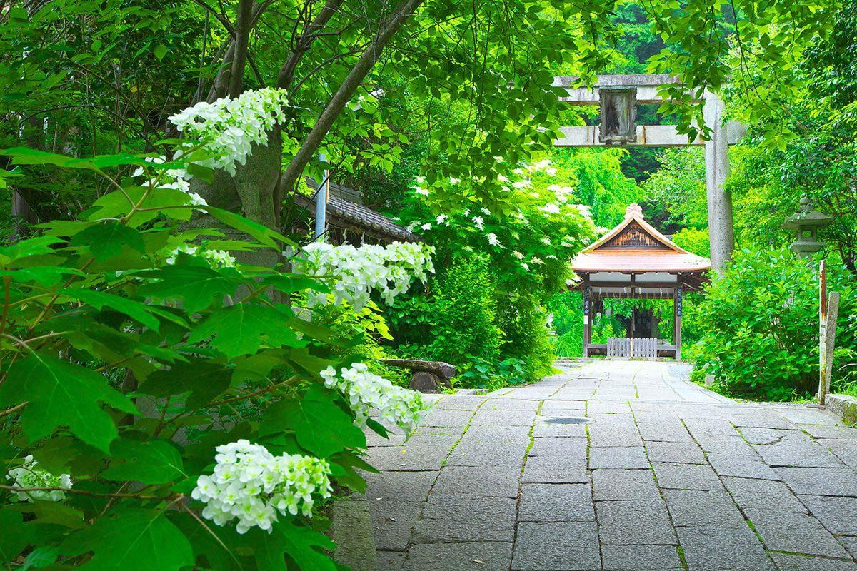 Otoyo Shrine