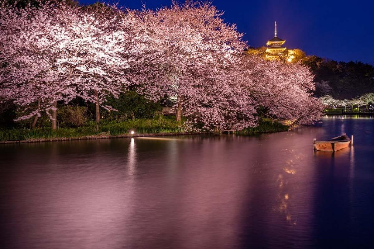 Công viên Sankeien