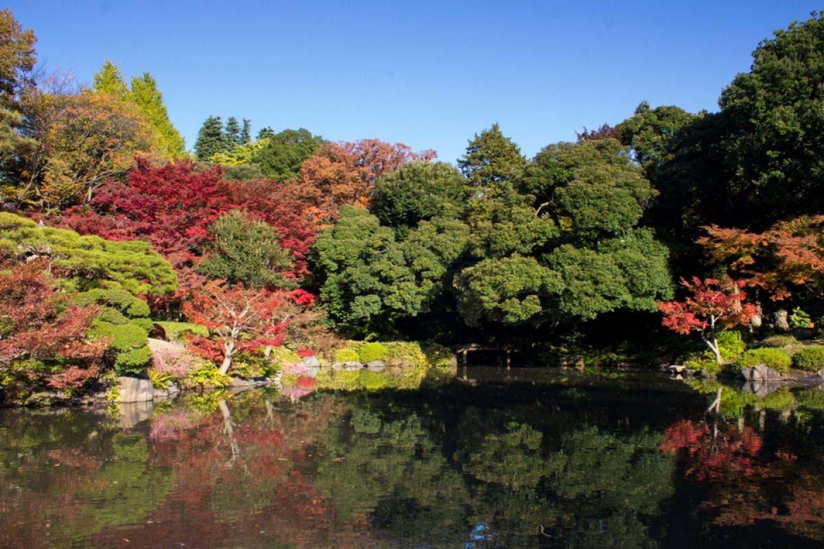 Vườn Kyu Furukawa