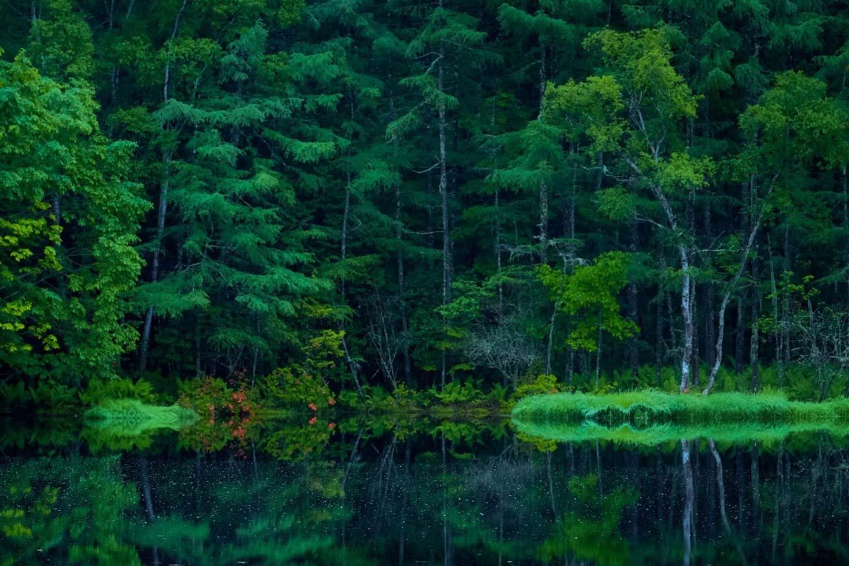 東山魁夷の画像 p1_12