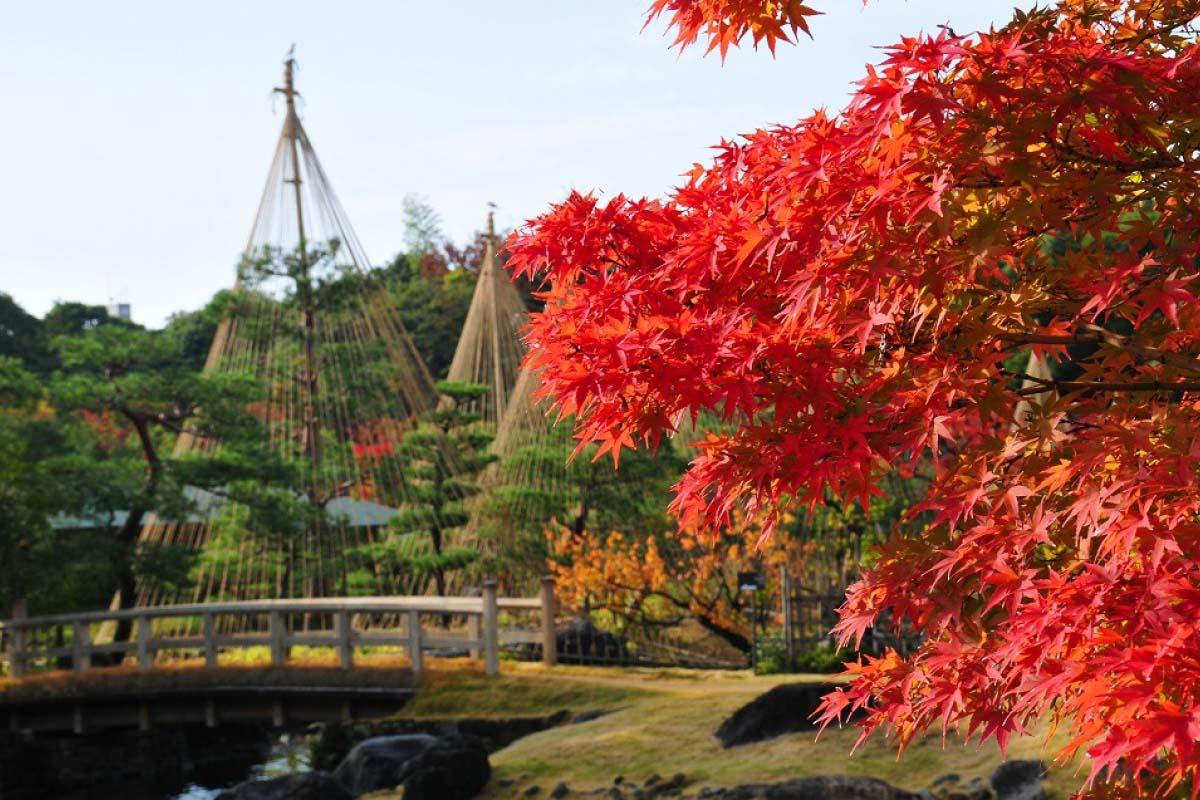 Shirotori Garden