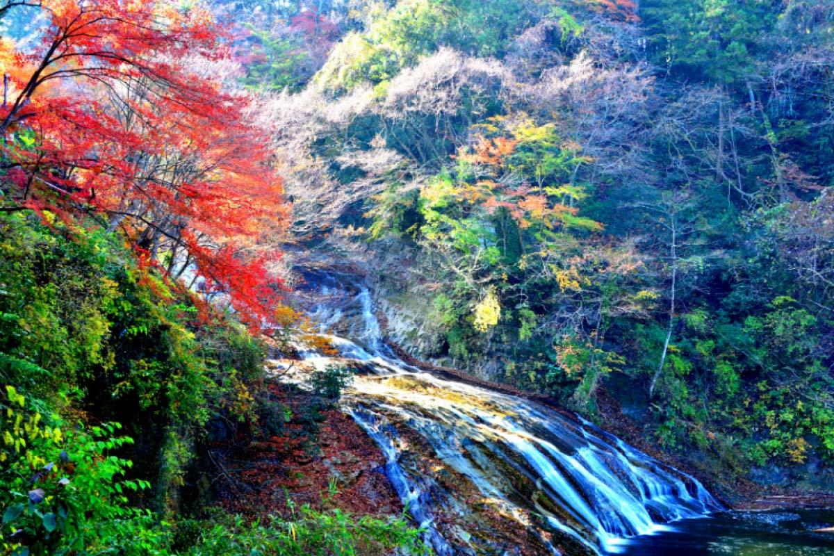Yoro Keikoku Okukiyosumi Prefectural Natural Park