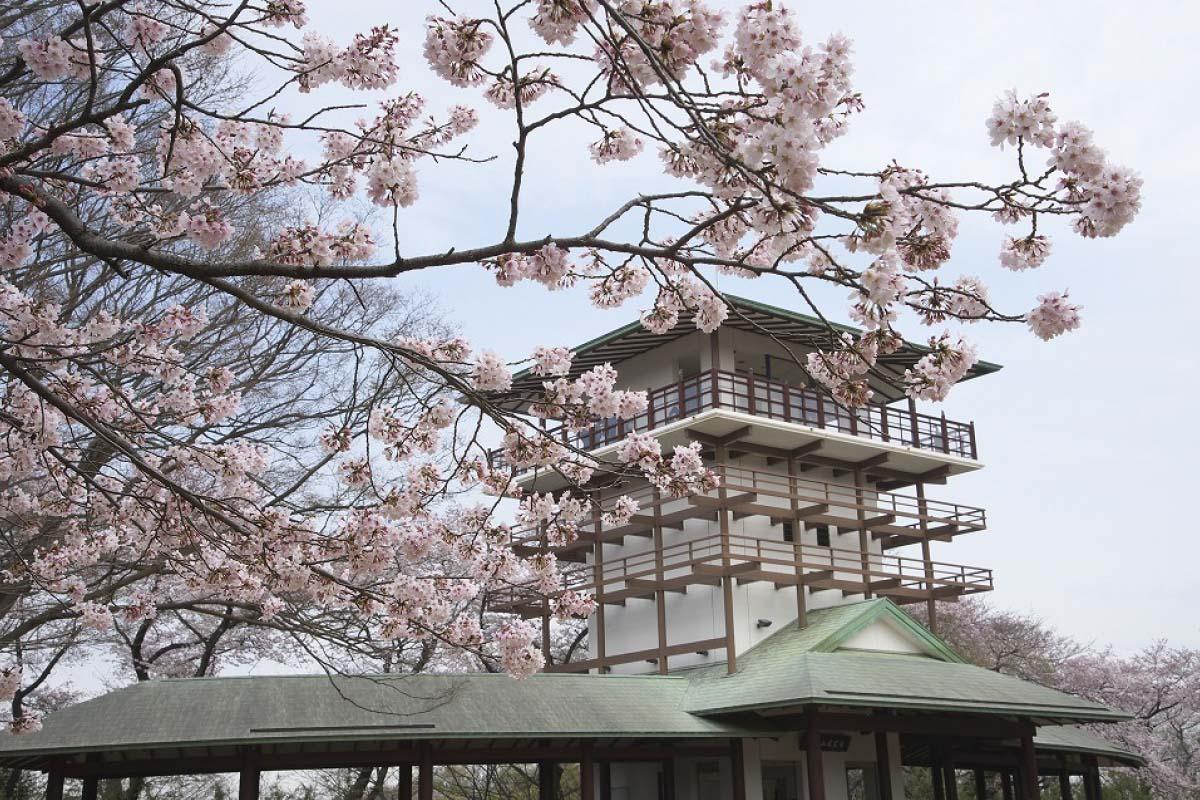 Thành phố xanh Ikuta