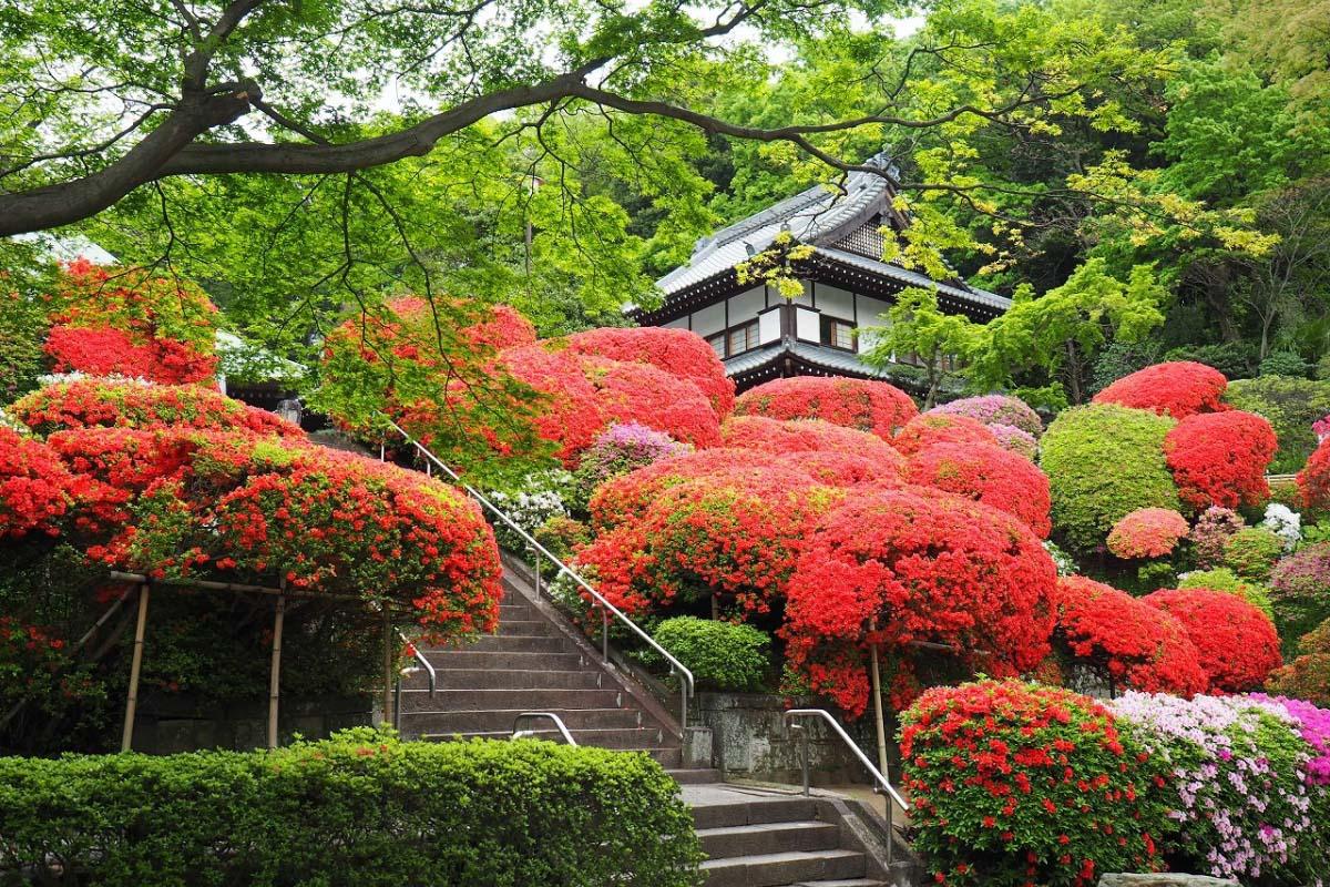 Kuil Togakuji