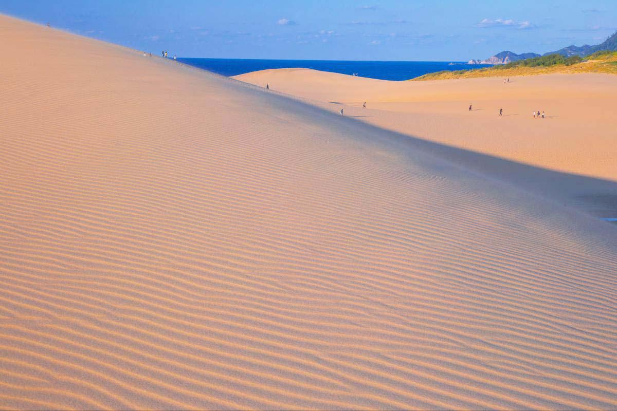 「鳥取砂丘」的圖片搜尋結果