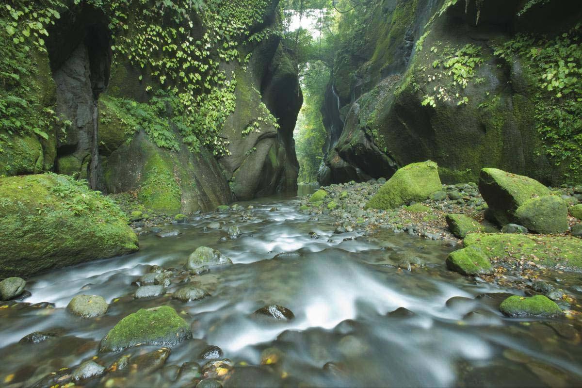 由布川渓谷の絶景|ZEKKEI Japan