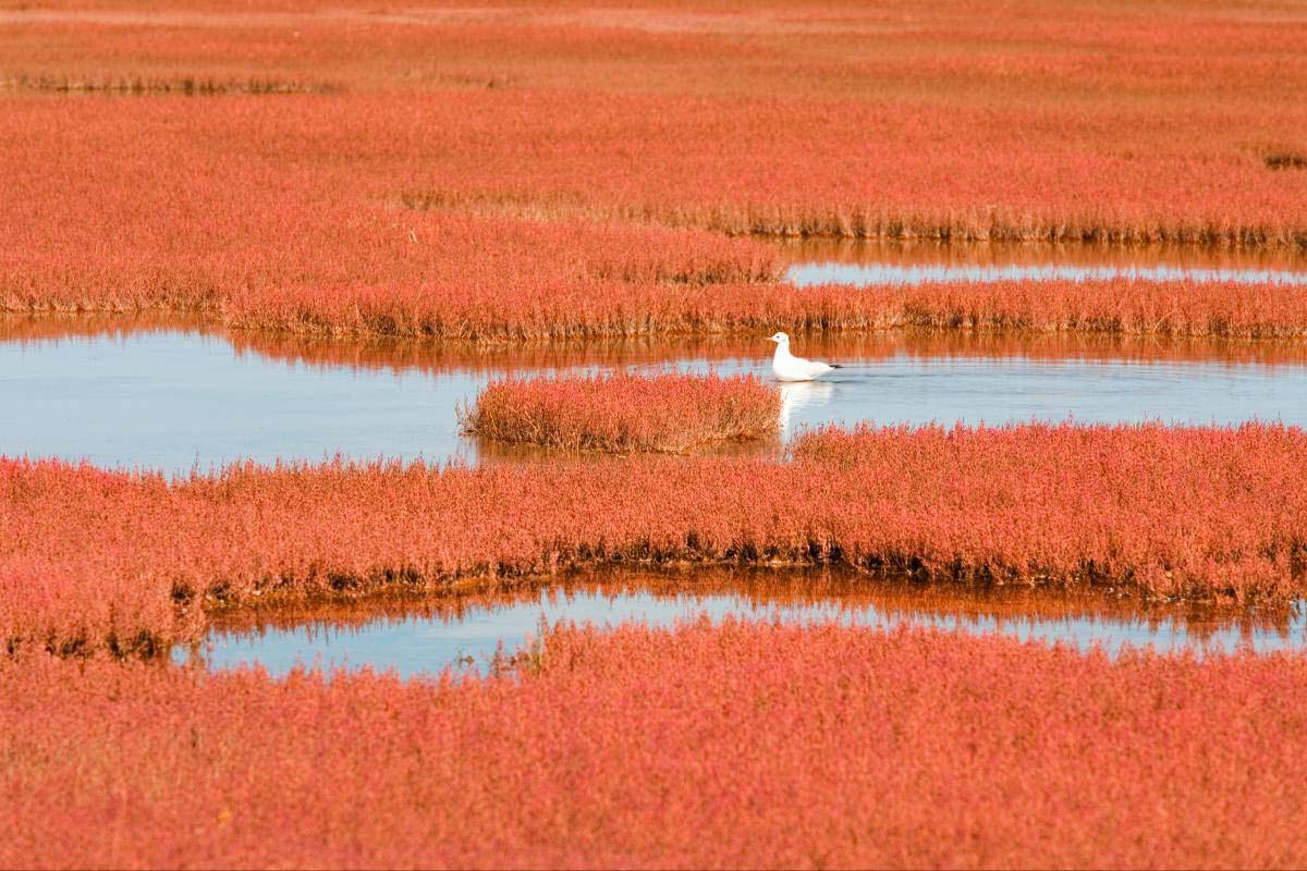 Lake Notoro