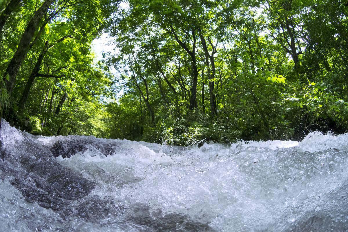 奥入濑溪流