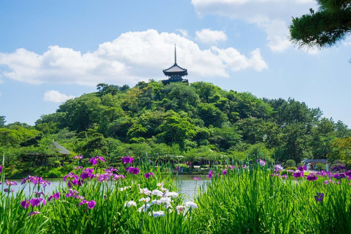 Sankei-en Garden