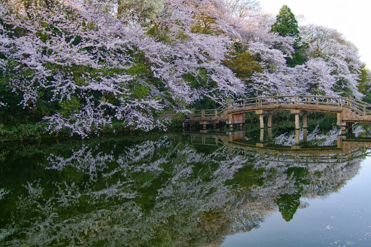 Takaoka Castle Park