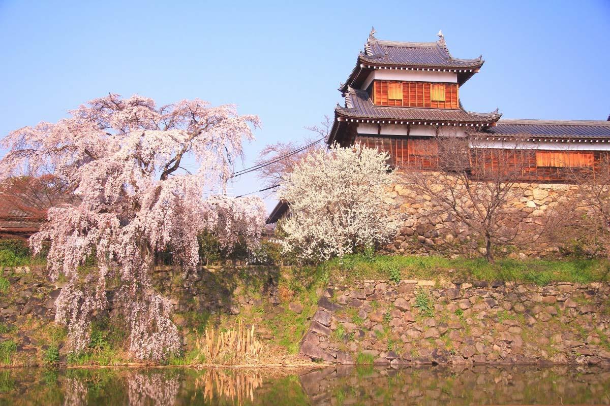 Koriyama Castle Ruins