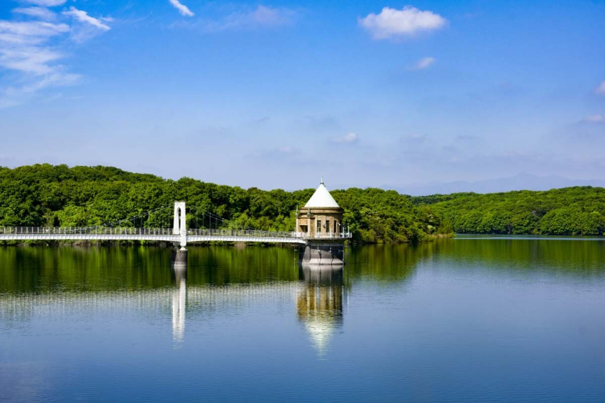 Sayama Lake