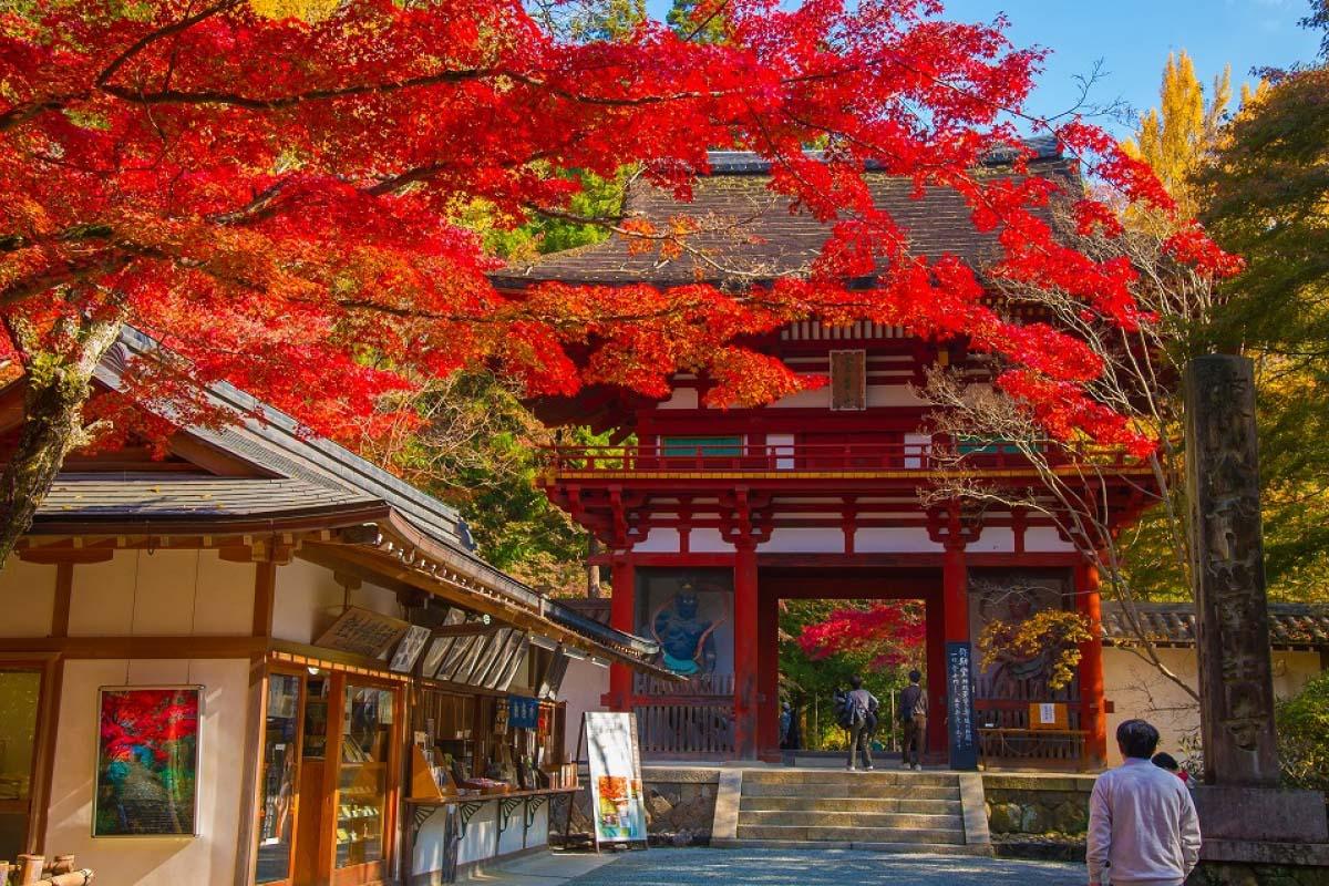 Muroji Temple