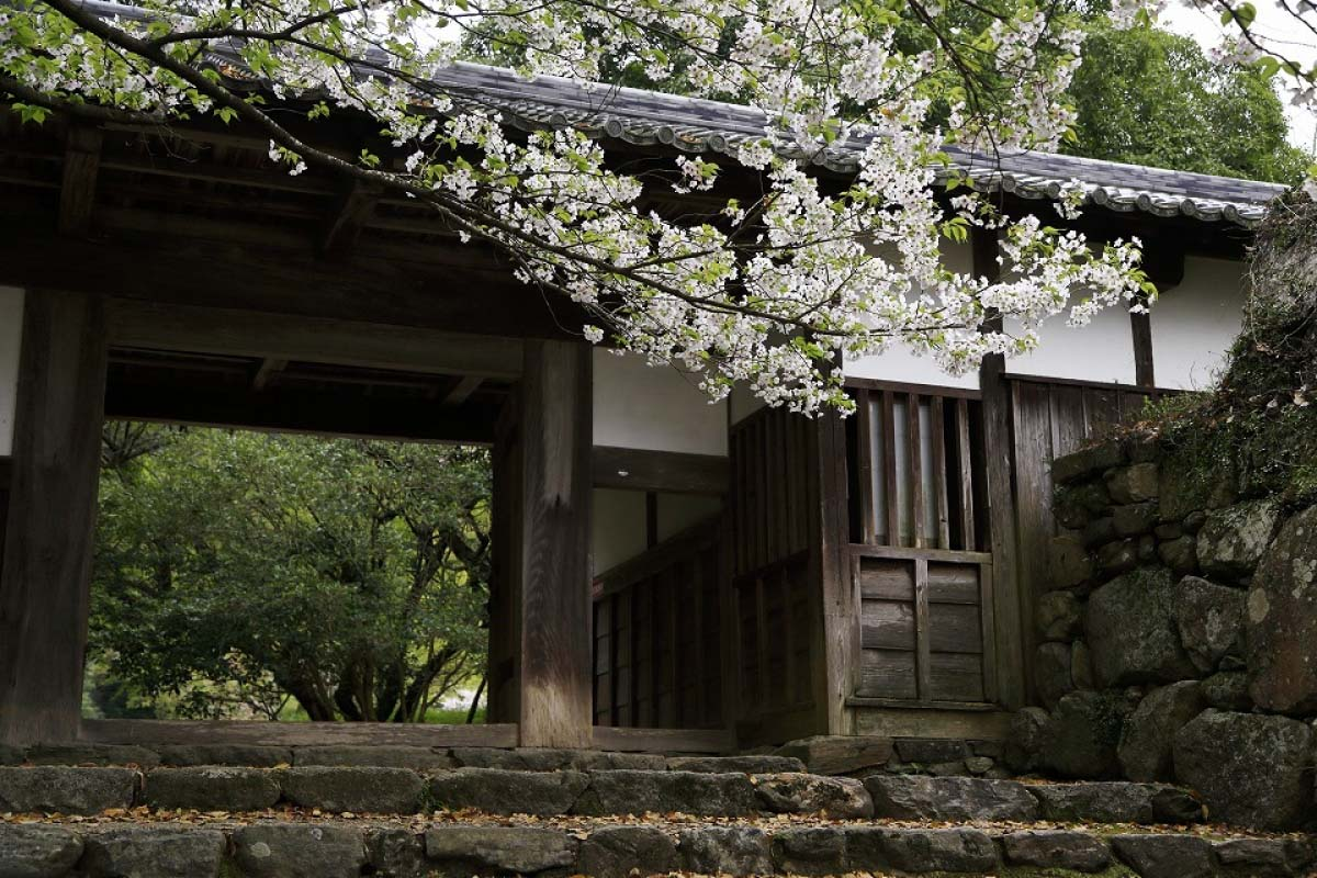 Akizuki Castle Ruins