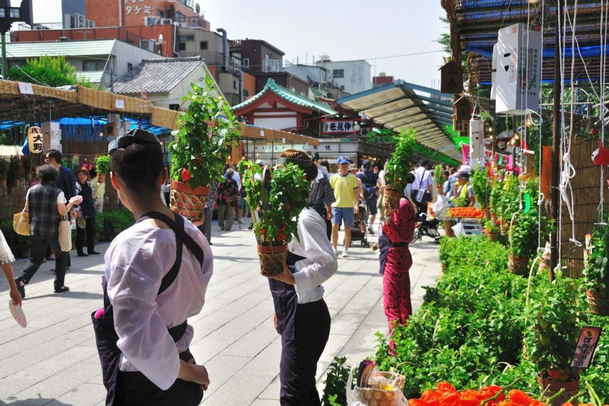 Hozuki Market, Asakusa