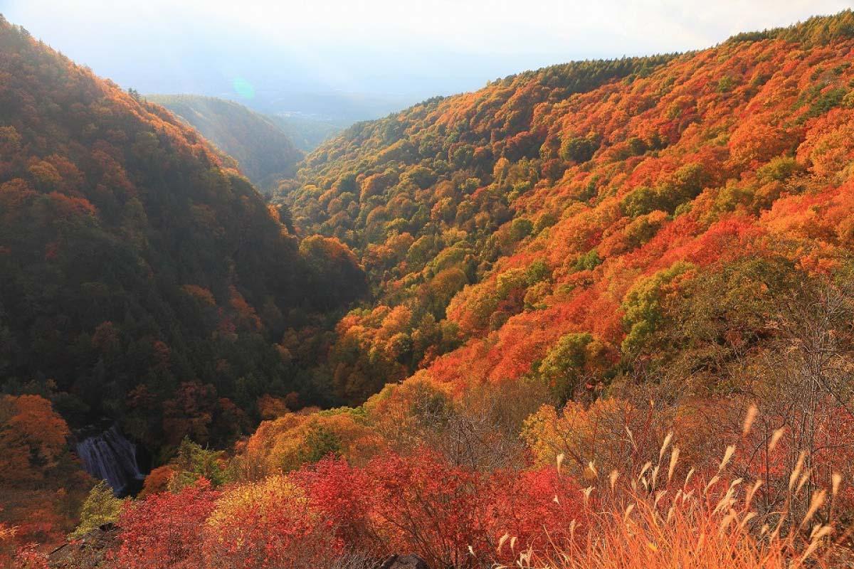 Yokoya Valley