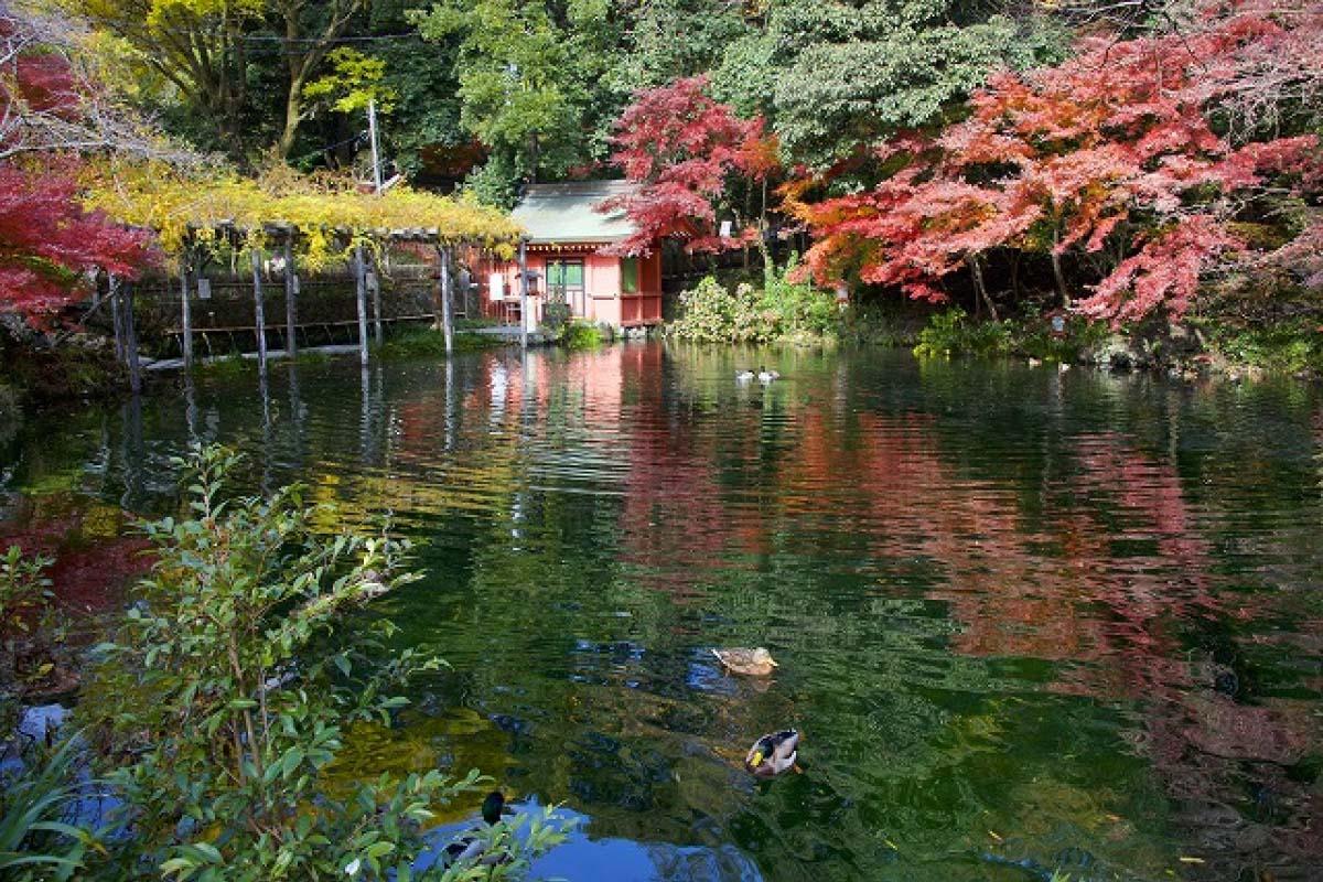 Đền thờ Fujisan Hongu Sengen Taisha