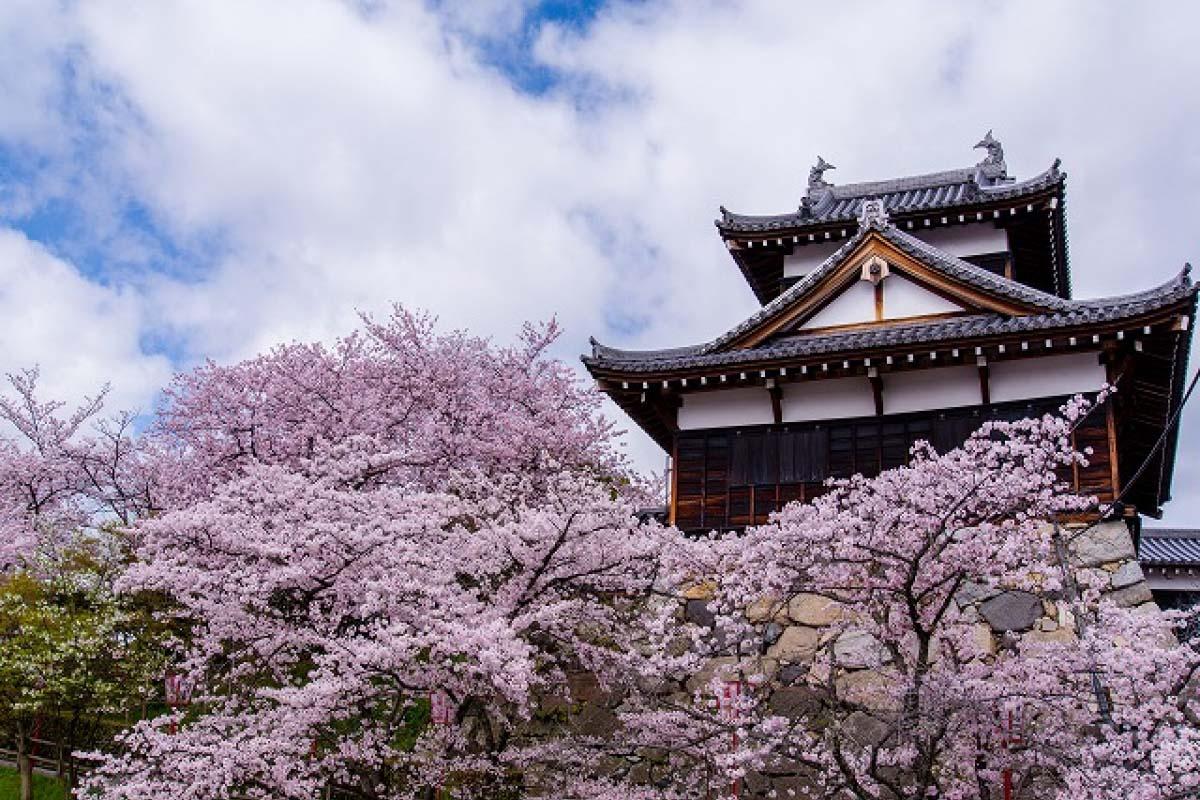 Khu di tích thành Koriyama