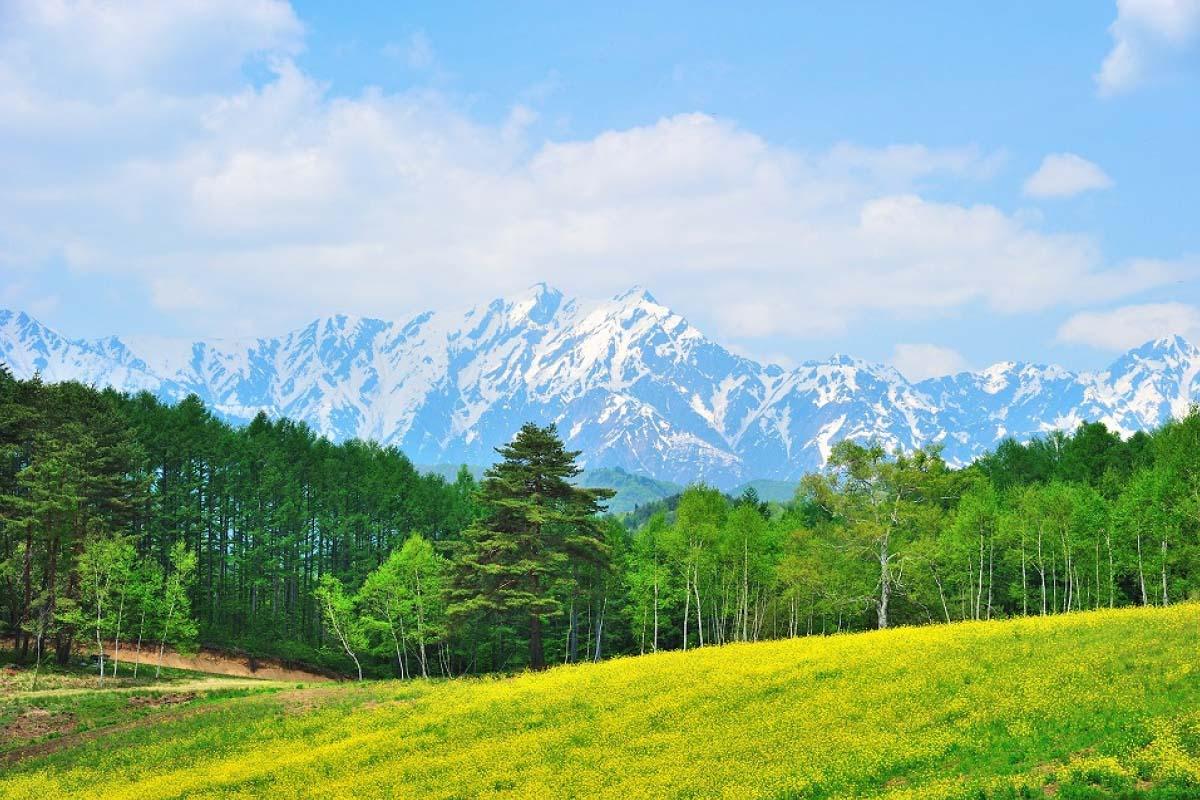Nakayama Highlands