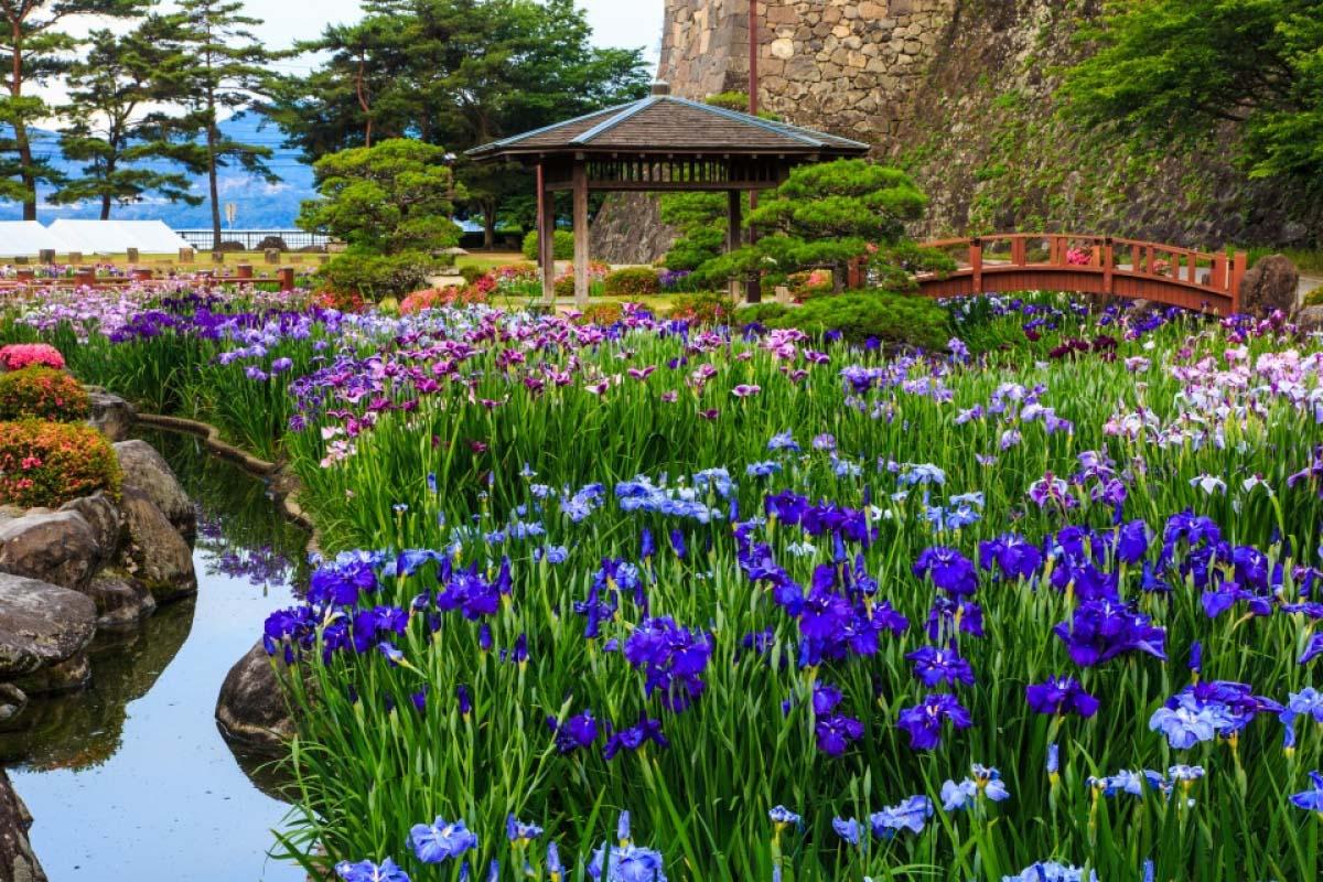 Công viên Omura
