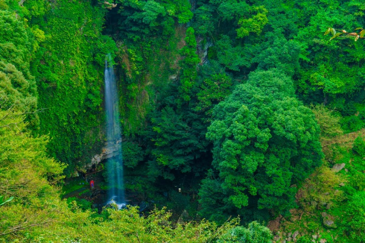 Urami Waterfall Flower Garden