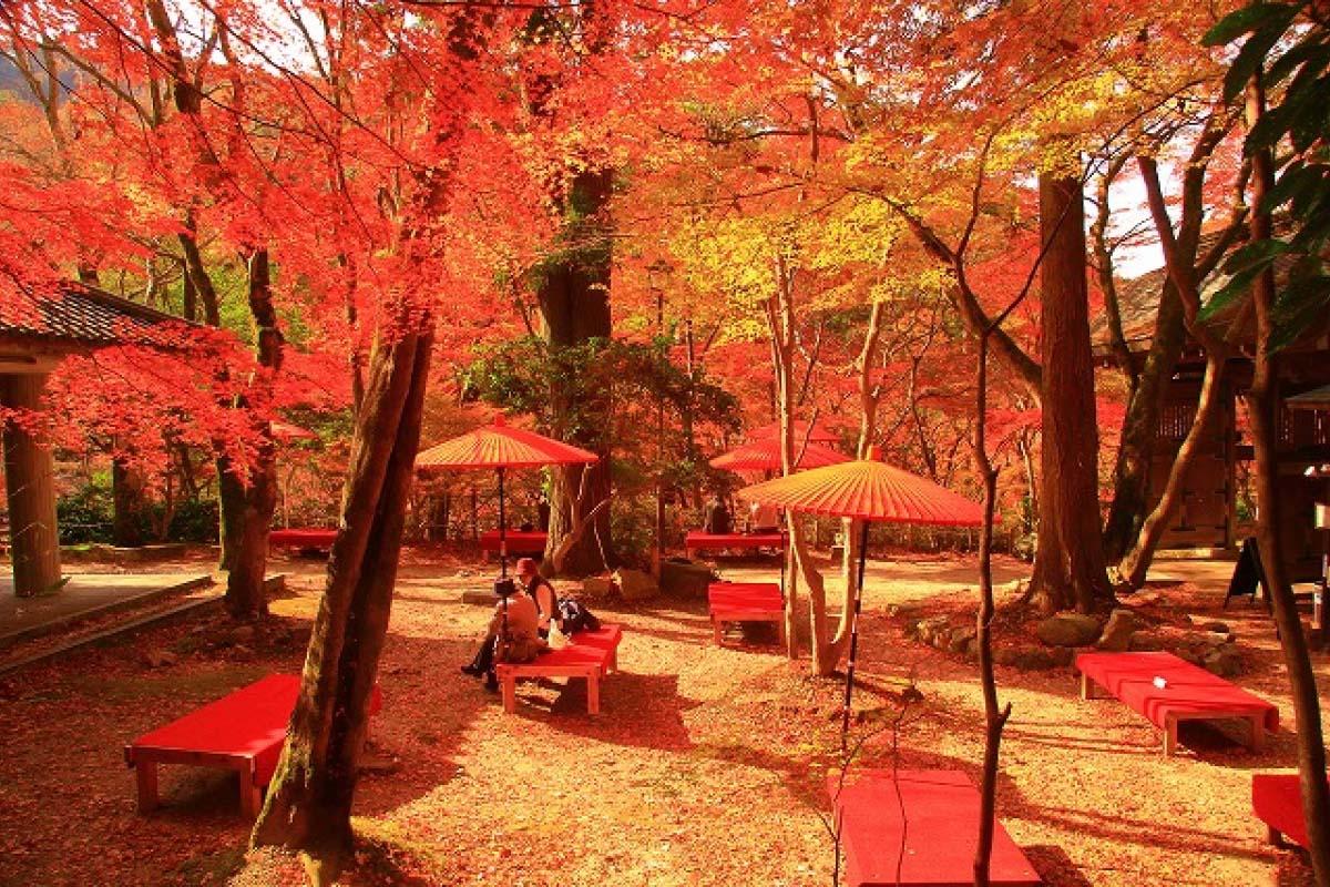 Công viên Zuihouji