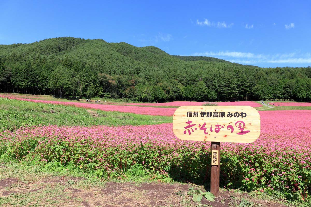 Akasoba no Sato