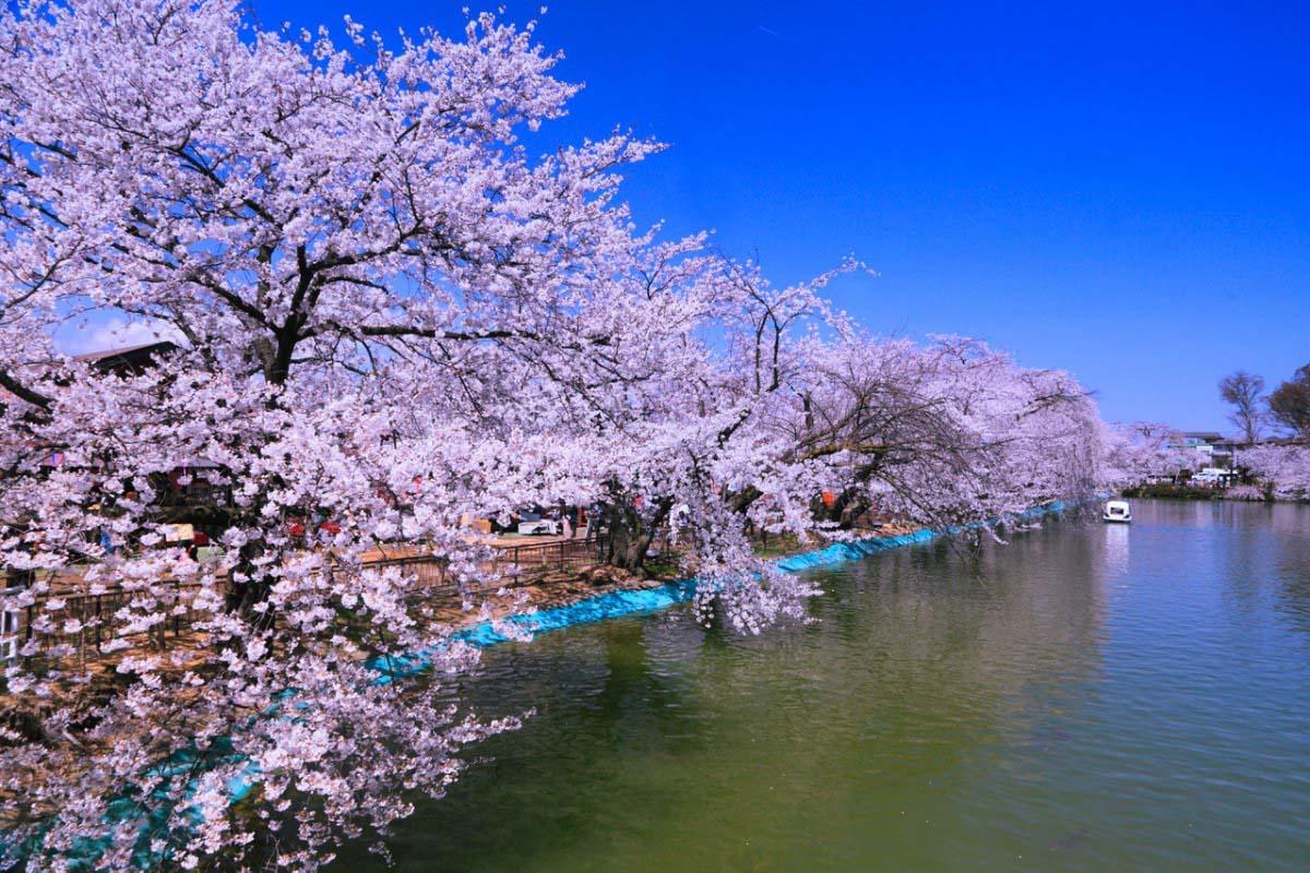 臥竜公園の絶景|ZEKKEI Japan