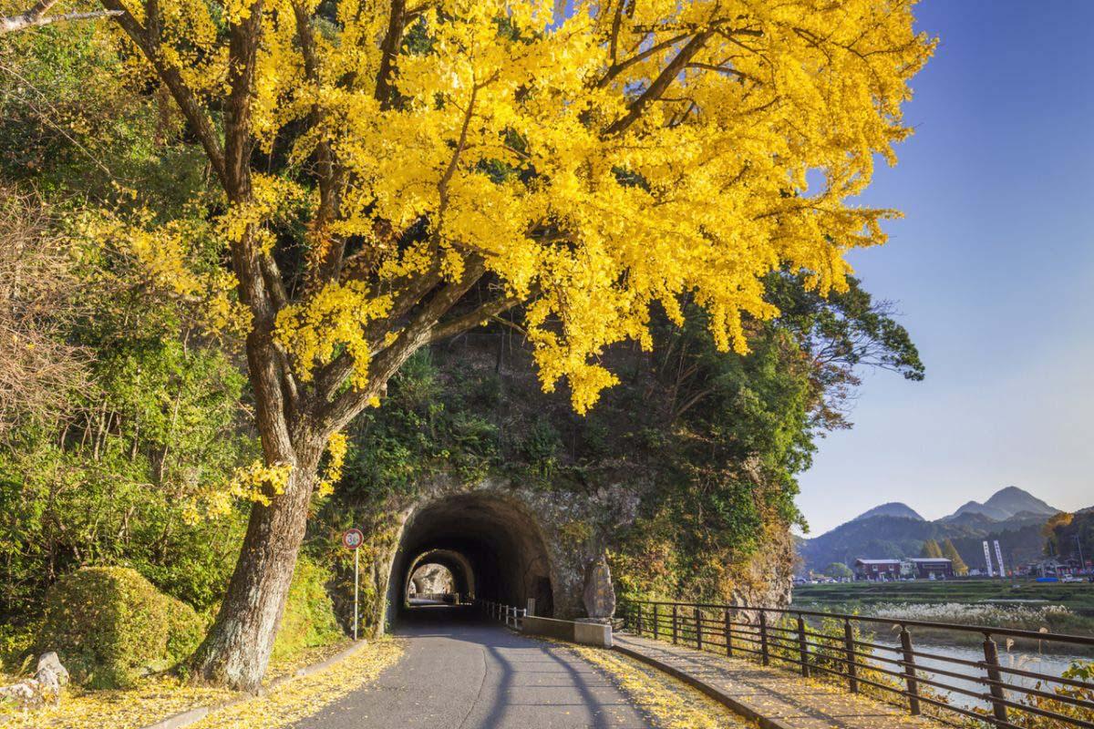 Yabakei Gorge, Ao-no-domon (Tunnel)