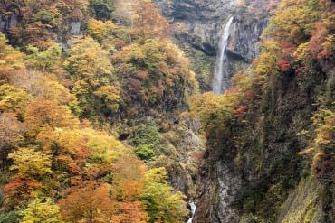 Sotaki Waterfall(Niigata)