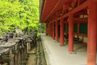 Kasuga Grand Shrine(Nara)
