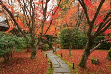 Đền Saihoji