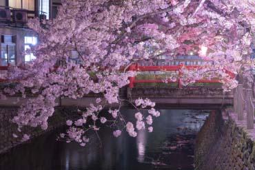 城崎温泉(兵库、神户)
